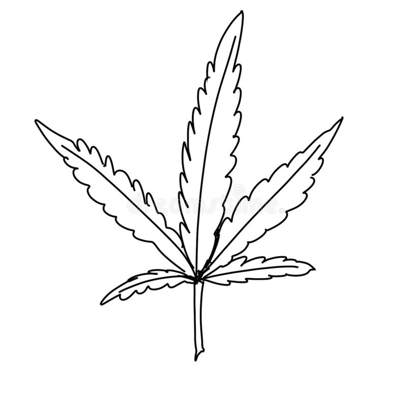 Marijuana Leaf illustration stock