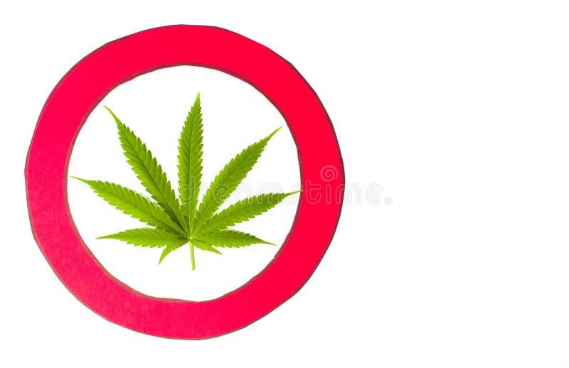 Marijuana leaf inside red circle isolated stock photo