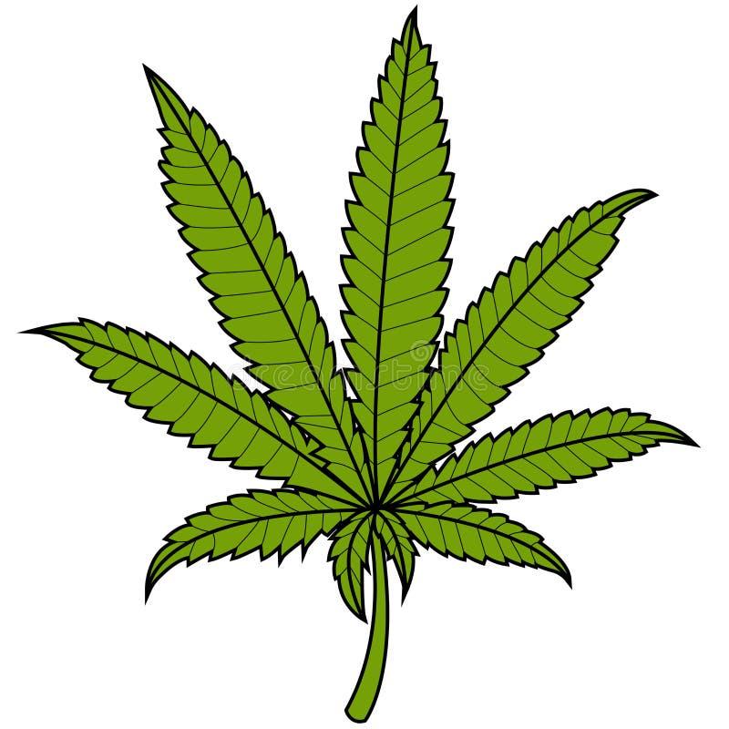 marijuana leaf stock vector illustration of green cannabis 50435013 rh dreamstime com marijuana leaf vector black marijuana leaf vector download