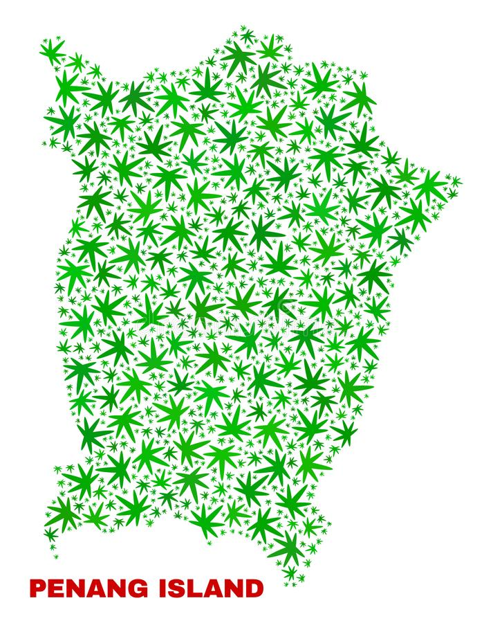 Marijuana Leaves Collage Penang Island Map. Vector marijuana Penang Island map collage. Concept with green weed leaves for marijuana legalize campaign. Vector vector illustration