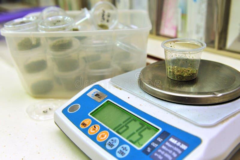 Marijuana médicale photos stock
