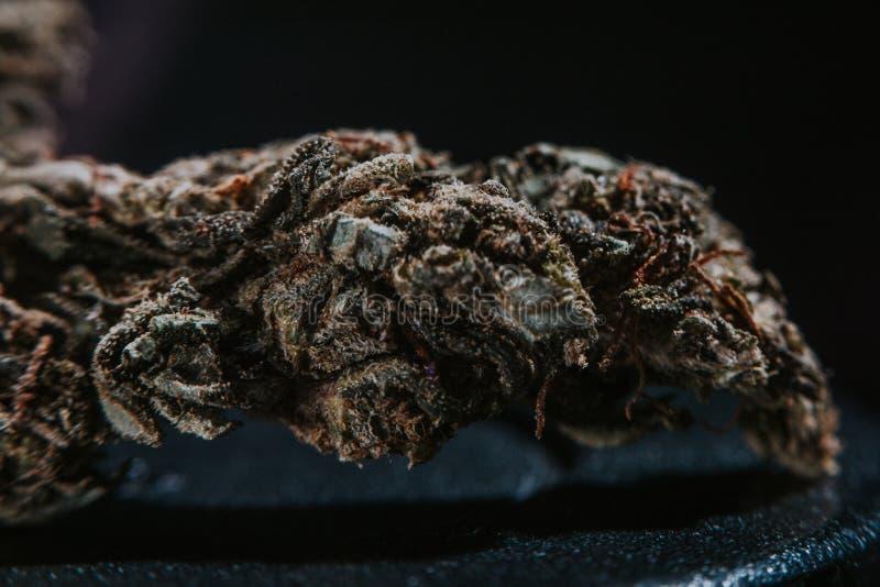 Marijuana médicale, cannabis, sativa, indica, Trichomes, THC, CBD, traitement de cancer, mauvaise herbe, fleur, chanvre, gramme,  photographie stock
