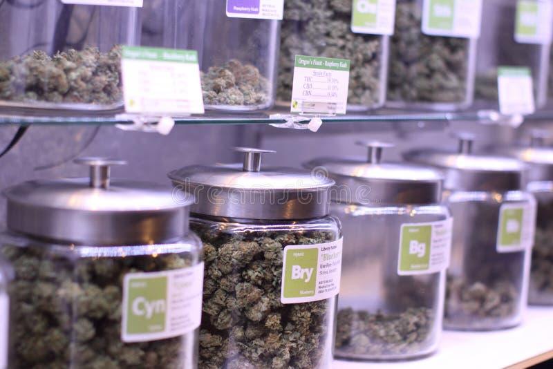 Marijuana medica immagine stock libera da diritti