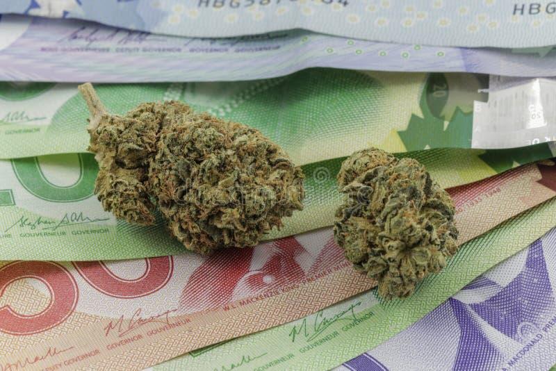 Marijuana no dinheiro canadense imagens de stock royalty free