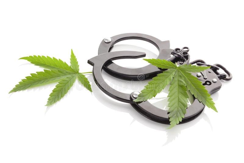 Marijuana och handbojor royaltyfri bild