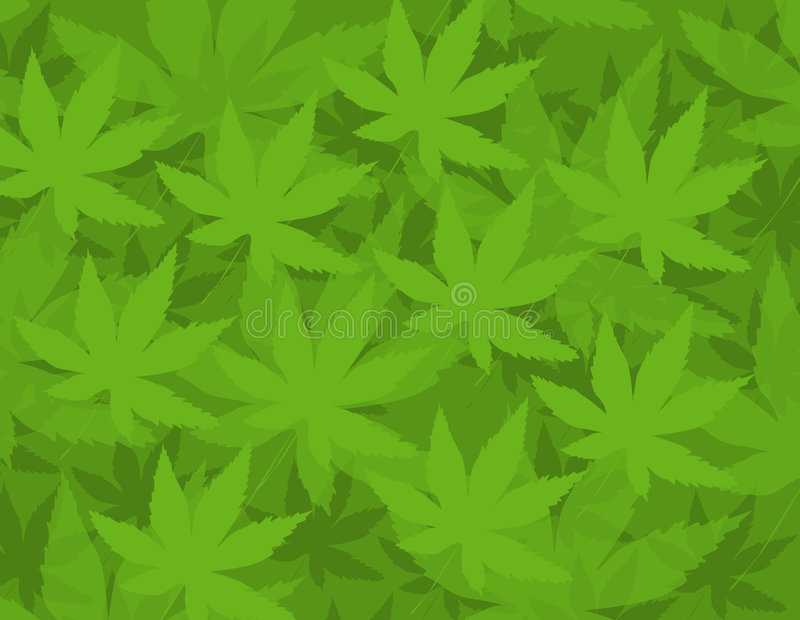 Marijuana Patern. This patern is ideal background or design element royalty free illustration
