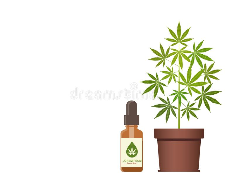 Marijuana plant and dropper with CBD oil. Cannabis Oil. Medical marijuana. CBD oil hemp products. Bottle mock up. Packaging product label and logo graphic vector illustration