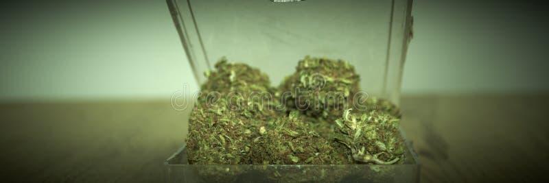 Download Marijuana RX stock photo. Image of high, herbal, indica - 32543390