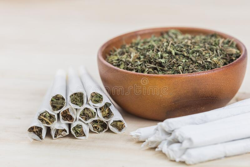 Marijuana or weed or cannabis on wooden bowl and in the rolled joint. Close up shot of marijuana or weed or cannabis on wooden bowl and in the rolled joint stock photography