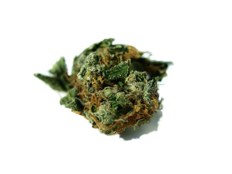Marijuana in zoom. And ganja detail royalty free stock images
