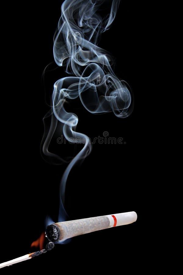 Marijuanaskarv arkivbild