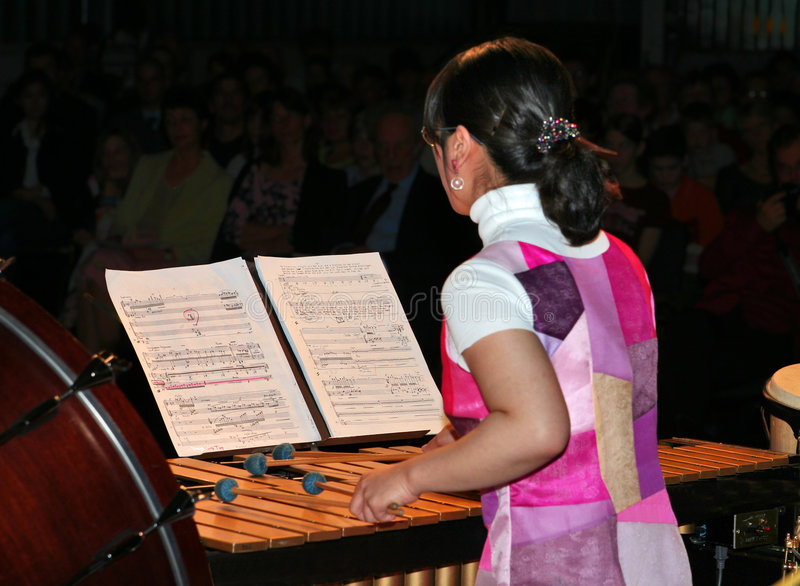 Marimba im Konzert lizenzfreies stockbild