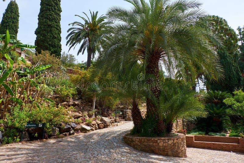 Marimurtra botanisk trädgård i Blanes, Catalonia royaltyfri bild