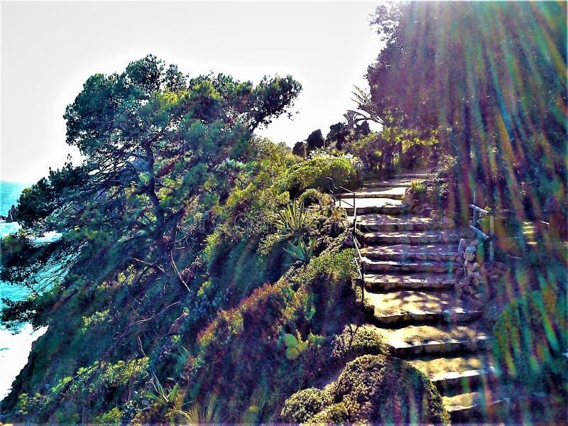 Marimurtra botanisk trädgård i Blanes, Catalonia, Spanien Ray av färger, ljus, naturen, trappan till paradiset och sagan arkivfoto