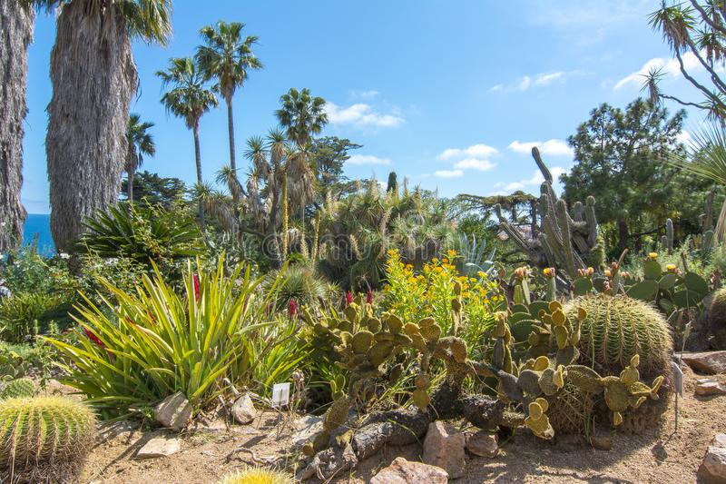 Marimurtra botanisk trädgård på Blanes nära Barcelona, Spanien royaltyfri foto