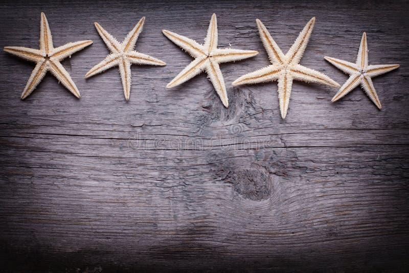 Marin- objekt på träbakgrund arkivbild
