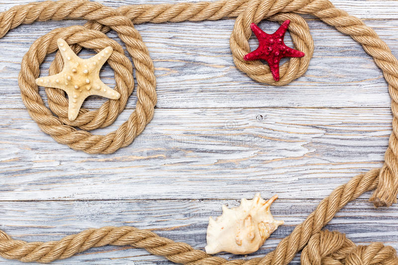 Marin- rep och sjöstjärna på vita bräden arkivfoto
