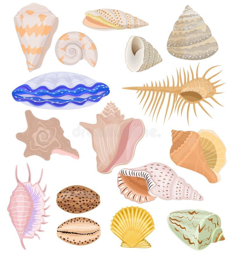 Marin- snäckskal för skalvektor och uppsättning för havbubbla-SHELL undervattens- illustration av skaldjur och mussla-SHELL eller stock illustrationer