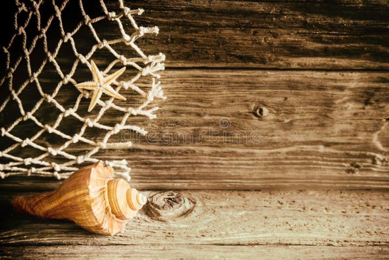 Marin- snäckskal, sjöstjärna och fisknät royaltyfri fotografi