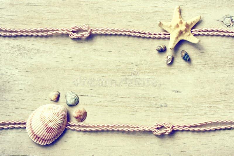 Marin- temabakgrund, sjöstjärna, snäckskal, rep fotografering för bildbyråer