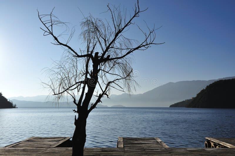 Download Marina stock image. Image of rock, lugu, travel, beauty - 13386233