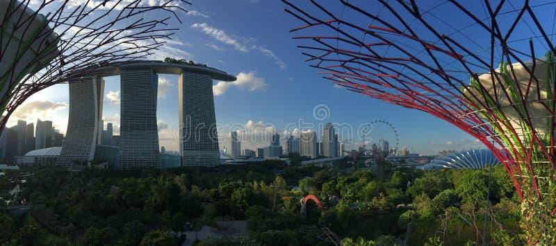 Marina Bay Sands, de Vlieger van Singapore en Bloemkoepel royalty-vrije stock afbeelding