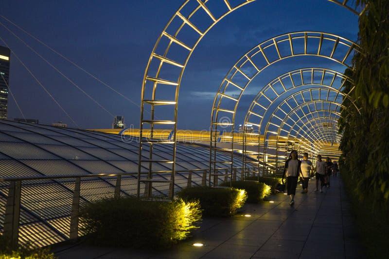 Marina Bay Sands-tuin in de avond royalty-vrije stock afbeeldingen