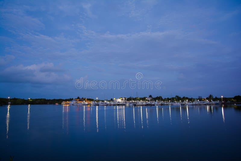Marina bleue image stock
