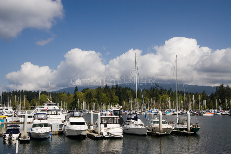 Marina. Coal Harbour royalty free stock images