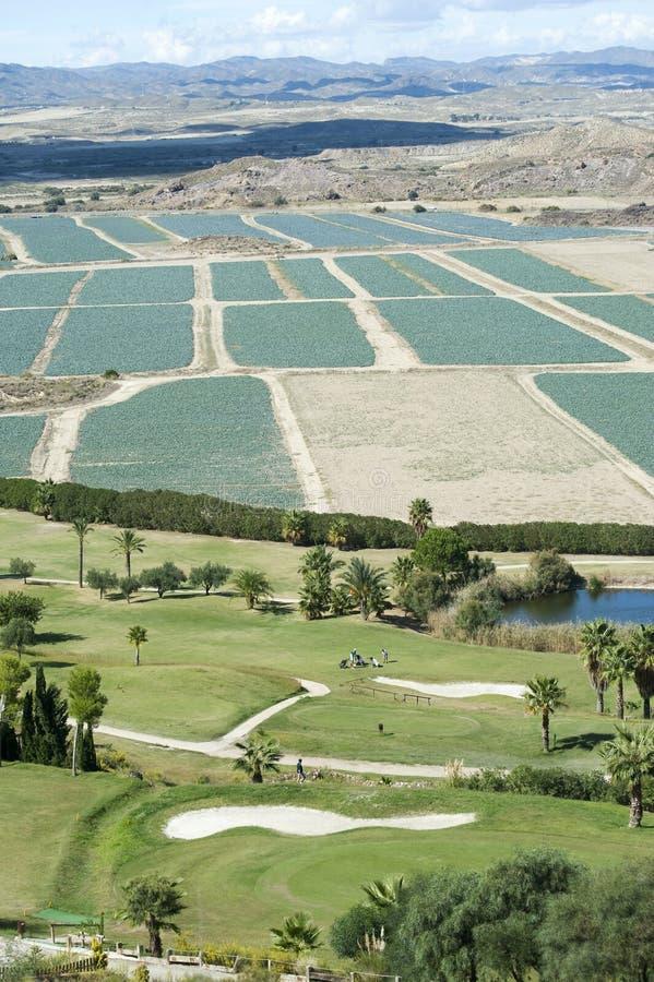 Download Marina Del Torre Golf Club stock photo. Image of fairway - 16467920