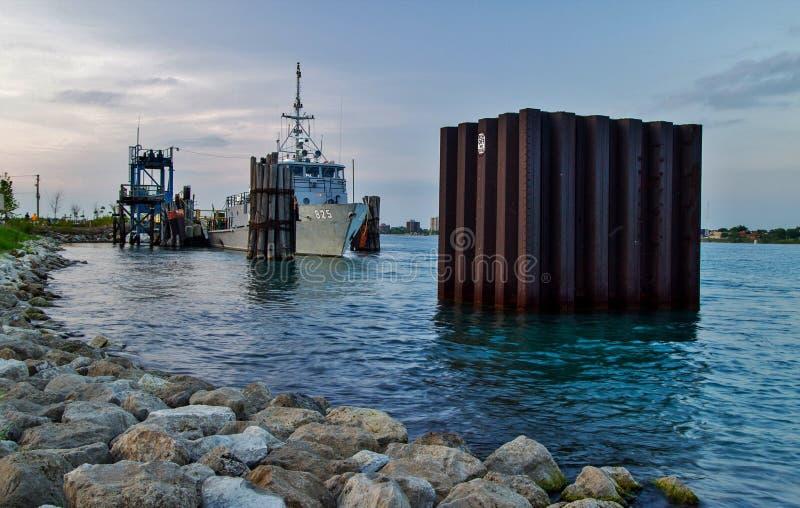 Marina statunitense Gray Fox fotografia stock