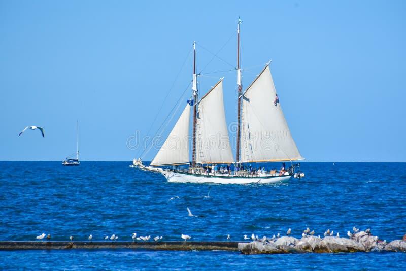 Marinai che lavorano alle vele - le navi alte sfoggiano sul lago Michigan in Kenosha, Wisconsin fotografia stock libera da diritti