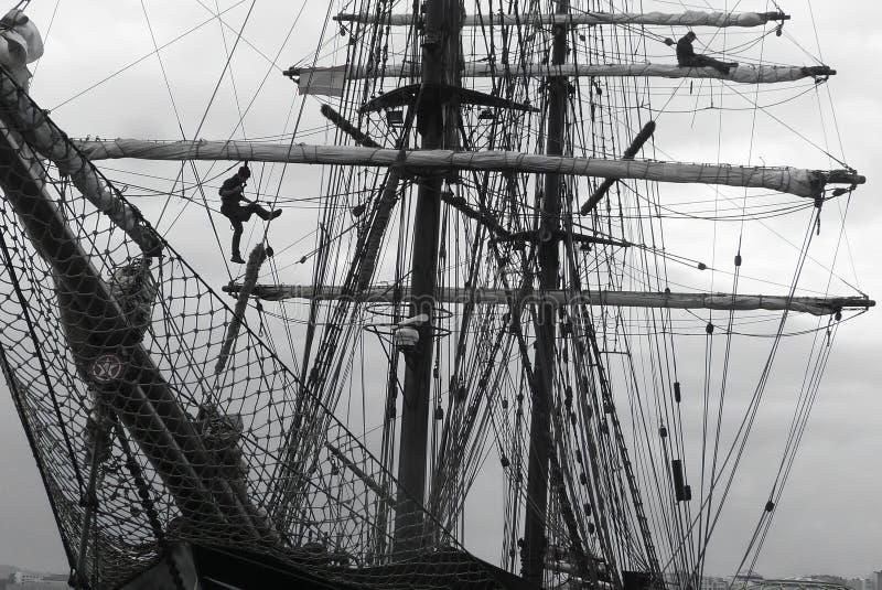 Marinai che lavorano in alto nel sartiame di un tallship tradizionale immagini stock libere da diritti
