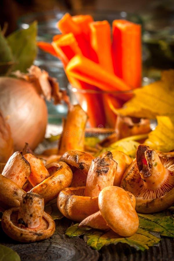 marinated грибы стоковые изображения rf