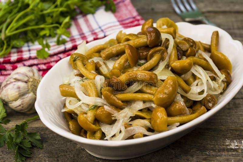 marinated грибы стоковые фотографии rf