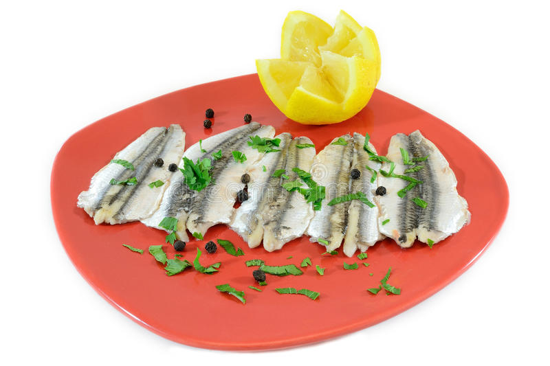 Download Marinated anchovies stock image. Image of life, diet - 19766131