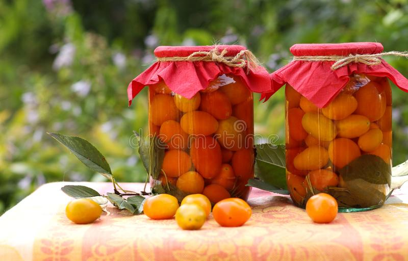 Marinated cherry tomatoes in jars on a table in the garden. Some of the tomatoes are scattered on the table royalty free stock photography