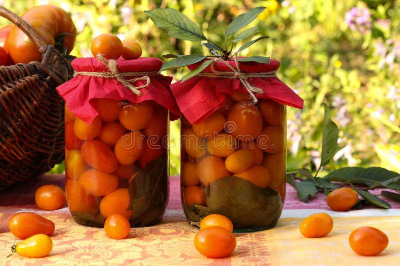 Marinated cherry tomatoes in jars on a table in the garden. Some of the tomatoes are scattered on the table. In the background a basket of tomatoes royalty free stock photography