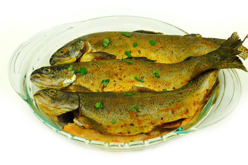 marinated fisk arkivfoto