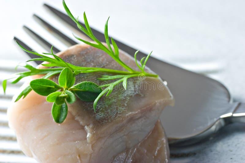 marinated fisk royaltyfria bilder