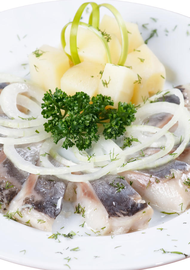Marinated herring fillets stock image