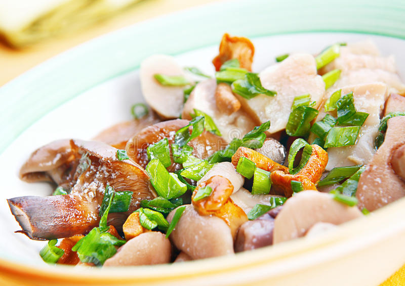 Download Marinated mushroom mix stock photo. Image of closeup - 21734888