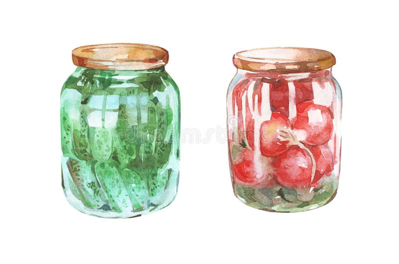 Marinated tomatoes and cucumbers. Watercolor art stock photos
