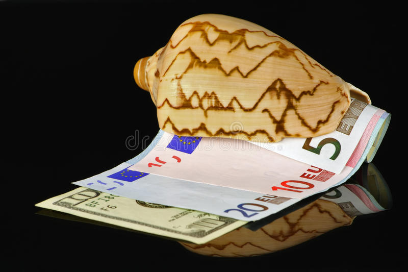 Download Marine bowl with money stock photo. Image of currency - 12310550