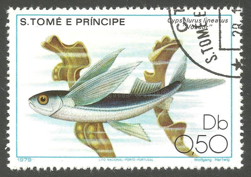 Marine Fauna, Vliegende Vissen royalty-vrije stock afbeelding