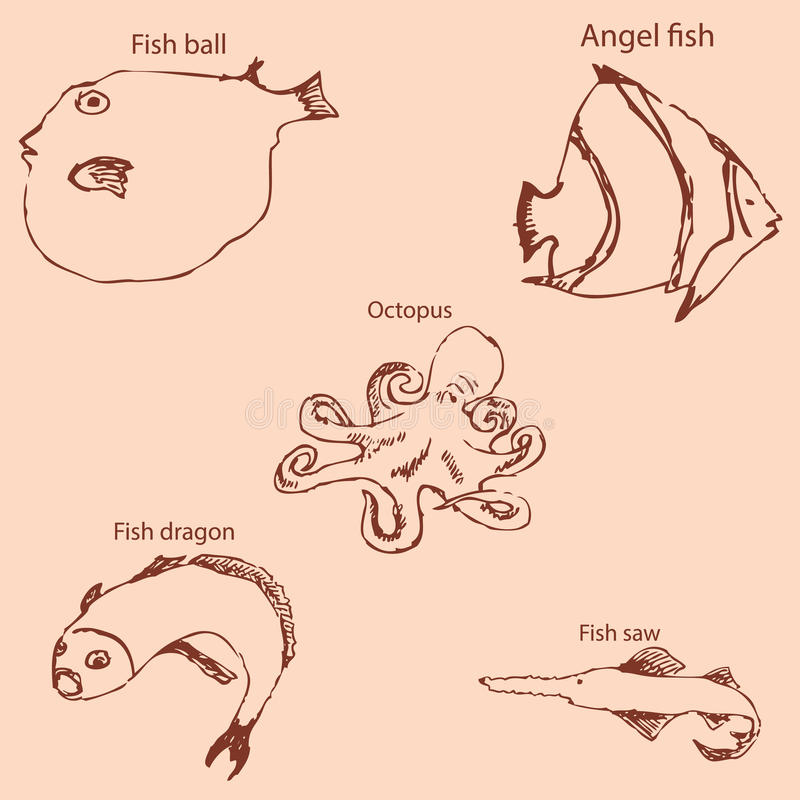Marine inhabitants with names. Pencil sketch by hand. Vintage colors. Vector. Image royalty free illustration