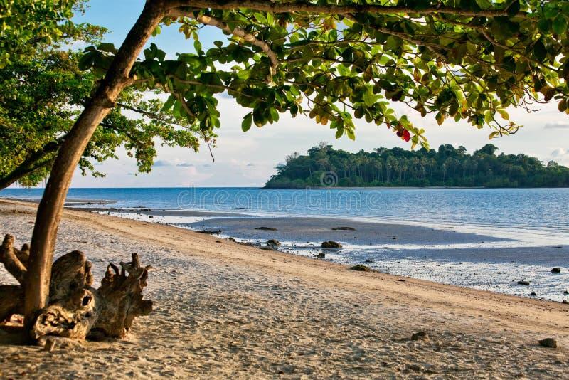 Download Marine Landscape. Royalty Free Stock Photos - Image: 24824278