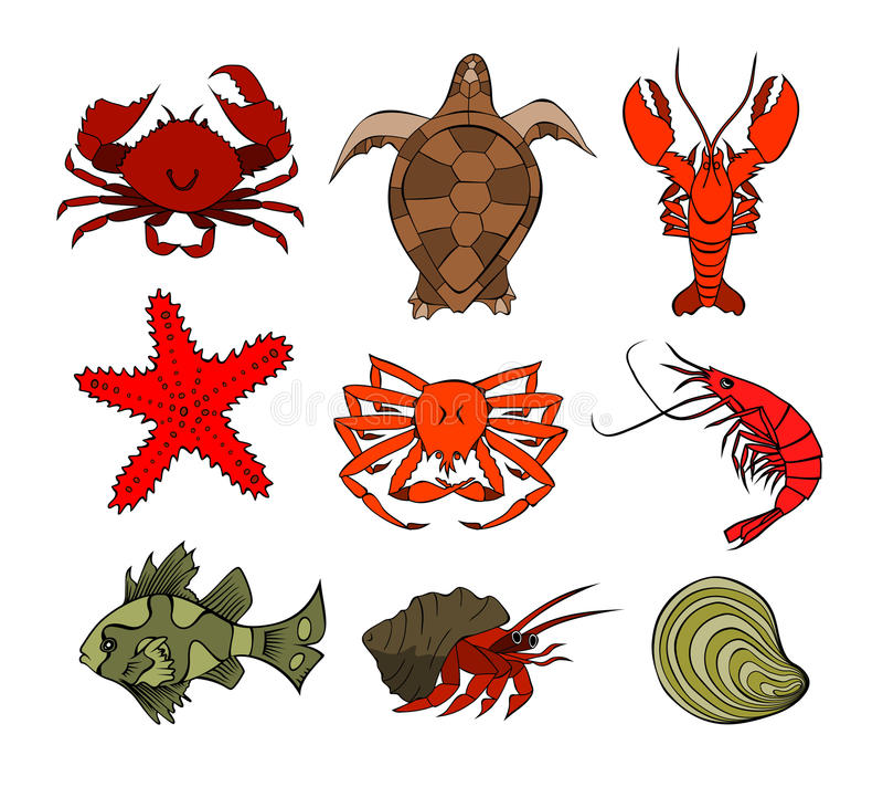 Download Marine Life 4 stock vector. Illustration of graphic, shrimp - 18372929