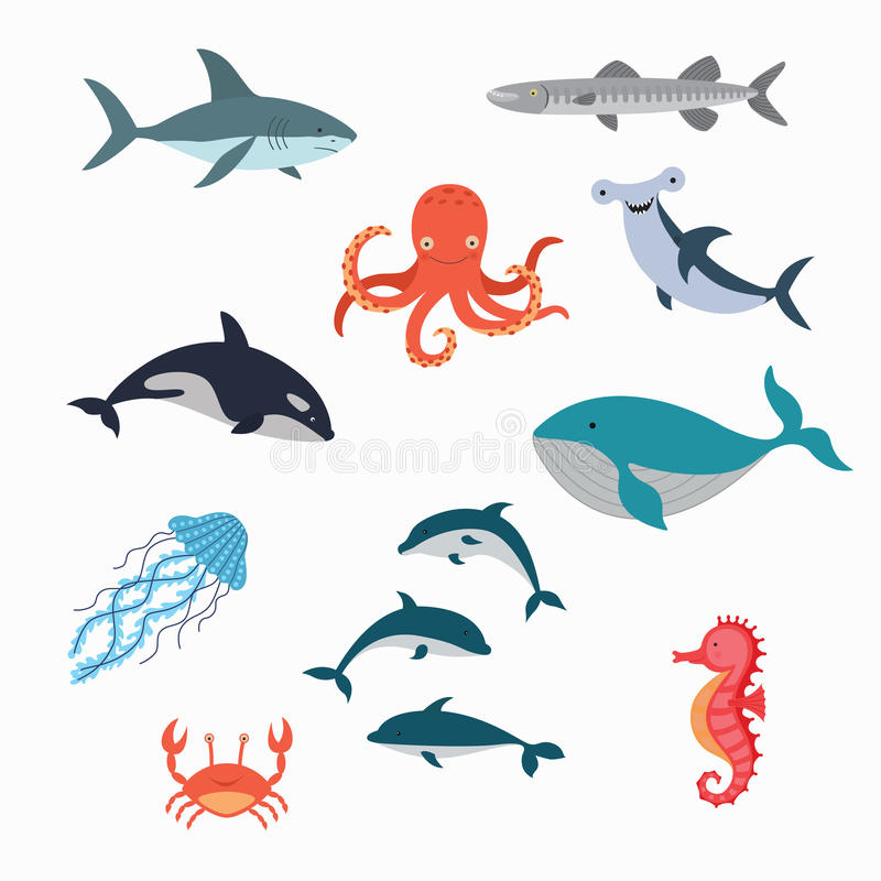 Marine Life Vector Design Illustration illustration de vecteur