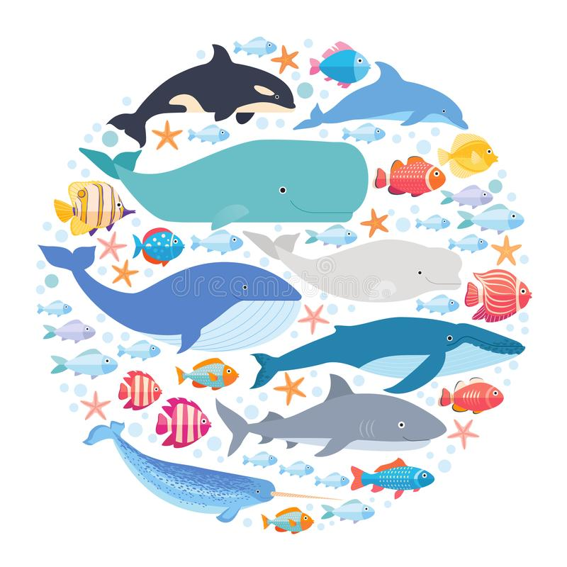 Marine mammals and fishes set in circle. Narwhal, blue whale, dolphin, beluga whale, humpback whale, bowhead and sperm. Whale vector on white isolated vector illustration